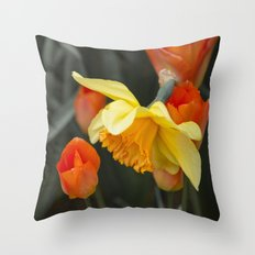 Narcissus Tulip  Throw Pillow