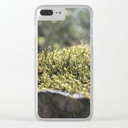 Moss Under Battle Creek Falls Clear iPhone Case