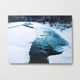 River Monster Metal Print