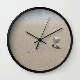 Sandpiper bird Wall Clock