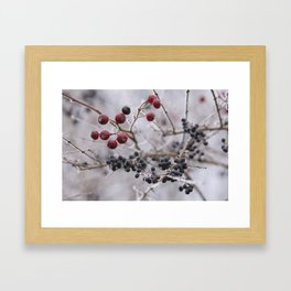 may your days be berry and bright Framed Art Print