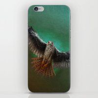 falcon iPhone & iPod Skins featuring Falcon by ED Art Studio