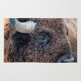 In The Presence Of Bison Rug