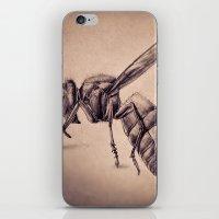 bee iPhone & iPod Skins featuring Bee by Werk of Art