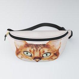 Cute Cat Stare Fanny Pack
