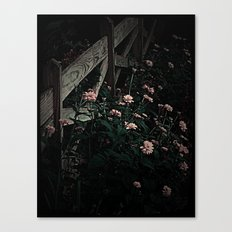 on the fence and in the dark Canvas Print