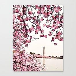 Washington Monument Amid Cherry Blossoms Canvas Print