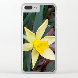 First sign of Sprng Clear iPhone Case
