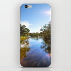 Audubon Park iPhone & iPod Skin