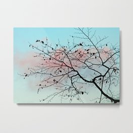 Pastel winter sky Metal Print