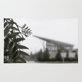 Stuff Behind Plants - CSU Rec Center Rug