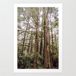 Tree Arms Art Print