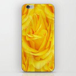 Modern Abstract Seamless Yellow Rose Petals iPhone Skin