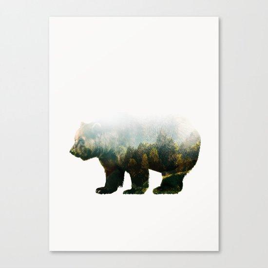 Colorado Forest Bear Canvas Print