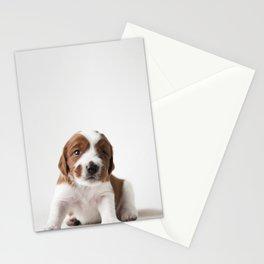 Wallovas Björk Puppy Stationery Cards