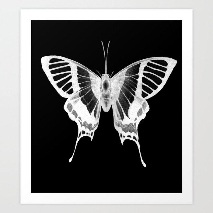 Butterfly's Ghost Art Print
