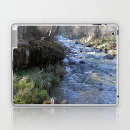 East Fork Hayfork Creek.... Laptop & iPad Skin