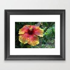 Joy in the Garden Framed Art Print