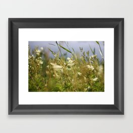Meadow II Framed Art Print