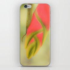 Tropical flower iPhone & iPod Skin