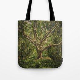 Spirits inside the wood Tote Bag