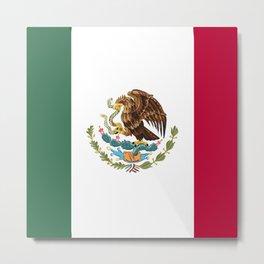 Mexico flag emblem Metal Print