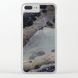 Rock Pool Amongst Mussel Beds Clear iPhone Case