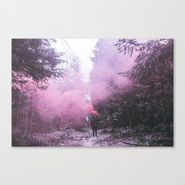follow Canvas Print