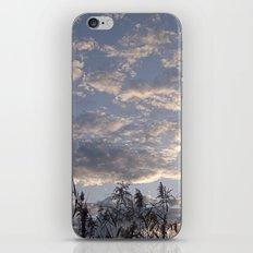Fall Sky iPhone & iPod Skin