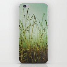 Ethereal World iPhone & iPod Skin