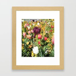 Flower Schadows Framed Art Print
