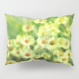 """""""Spring of daisies, green and sunlight"""" Pillow Sham"""