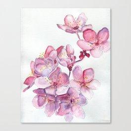 Sakura Sweeties Canvas Print