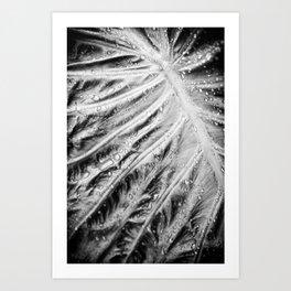 Wet Dream Art Print