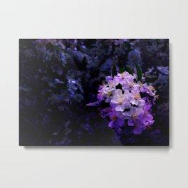Flower_27 Metal Print
