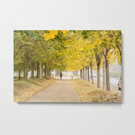 Walking under the trees in Autumn I Metal Print