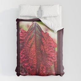 Lifeline Comforters