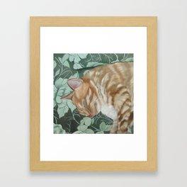 Catnap Sleeping Cat Painting Framed Art Print