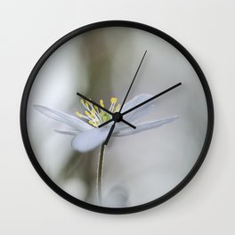 Adorable Wood Anemone... Wall Clock