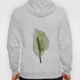 Peace Lily on White #1 #floral #decor #art #society6 Hoody