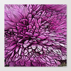 :: Pink Flare :: Canvas Print