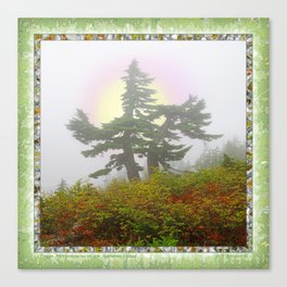 TSUGA MERTENSIANA IN AN AUTUMN CLOUD Canvas Print