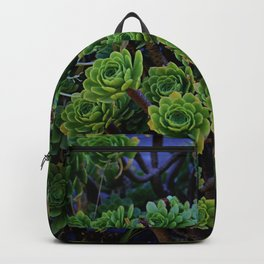 Succulent valley Backpack