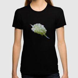 Shaun the sheep nudibranch herd T-shirt
