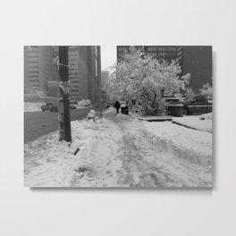 Snow in May Metal Print