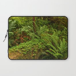 In The Cold Rainforest Laptop Sleeve