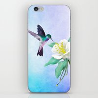 hummingbird iPhone & iPod Skins featuring hummingbird. by haroulita