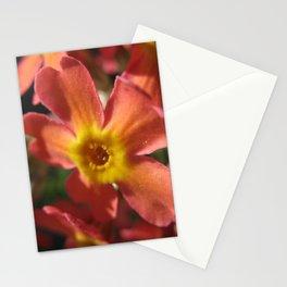 RedYellowOrange Stationery Cards