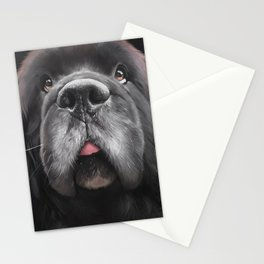 White Whiskers Stationery Cards
