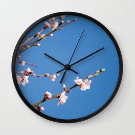 Pêcher sur fond bleu Wall Clock